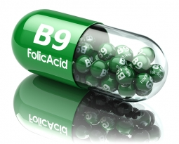 The benefits of folic acid and the body